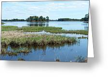 Seney Greeting Card