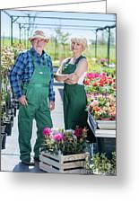 Senior Gardener And Middle-aged Gardener At Work. Greeting Card