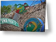 Senor Frog's - Playa Del Carmen Greeting Card
