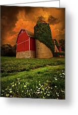 Sentient Greeting Card by Phil Koch
