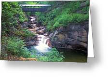 Sentinel Pine Bridge Flume Gorge Greeting Card
