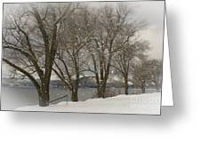Sentinels In The Snow Greeting Card