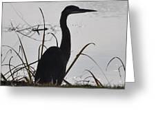 Sentry Of The Lake Greeting Card