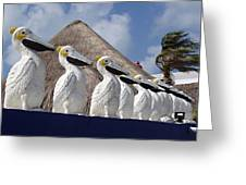 Sentry Pelicans Greeting Card