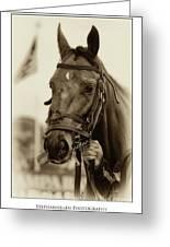 Sephia Racehorse Greeting Card