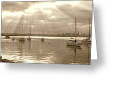 Sepia And Sunbeams Greeting Card