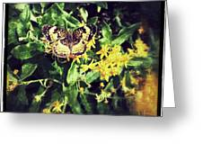Sepia Butterfly Greeting Card