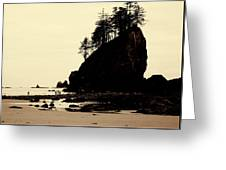 Sepia High Contrast Rialto Beach Greeting Card