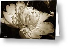 Sepia Peony Flower Art Greeting Card