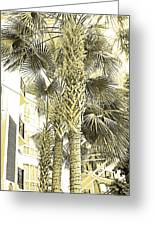 Sepia Toned Pen And Ink Palm Trees Greeting Card