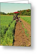 September 20-2016 Plowing Match  Greeting Card