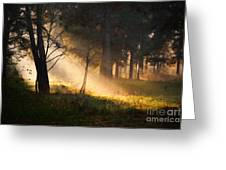 September Impressions Greeting Card by Rosario Piazza