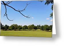 September In Deibert Park Greeting Card