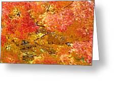 September Leaves Greeting Card
