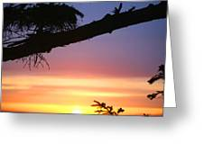 Sequim Sunset Ss 2007 Greeting Card