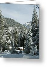 Sequoia National Park 7 Greeting Card