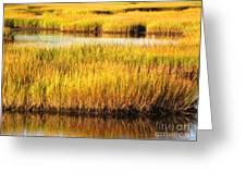 Serene Grasses Greeting Card
