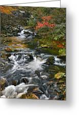 Serene Mountain Stream Greeting Card