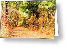 Serene Path Greeting Card