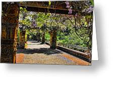 Serene Walkway  Greeting Card