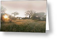 Serengeti Sunrise Greeting Card