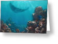 Serenity - Hawaiian Underwater Reef And Manta Ray Greeting Card