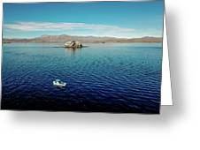 Serenity In The Sea Of Cortez  Greeting Card