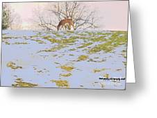 Serenity In The Spring Snow Greeting Card