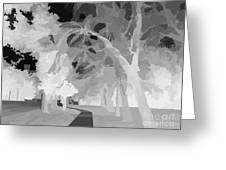 Series Of Black And White 47 Greeting Card