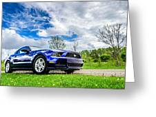 Serious Stang Greeting Card