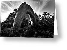Serpant Tree Greeting Card