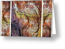 Set In Stone Triptych Greeting Card