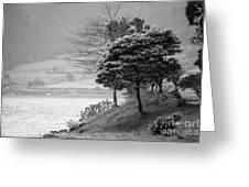 Sete Cidades Lakes Greeting Card
