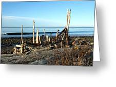 Seth's Seaside Driftwood Sculpture  Greeting Card