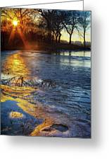Setting On Thin Ice Greeting Card