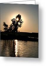 Setting Sun At Cypress Hills Greeting Card