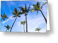 Seven Palms Of Paradise Greeting Card