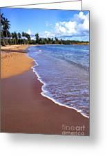 Seven Seas Beach Greeting Card