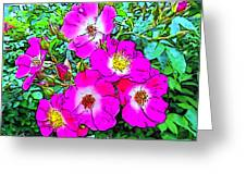 Seven Sisters Rose Variant Greeting Card