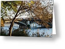 Seville - The Triana Bridge 2  Greeting Card