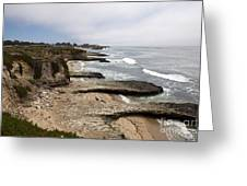 Seymour Marine Discovery Center Santa Cruz Greeting Card