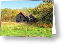 Shack In Fall Colours Greeting Card