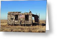 Shack With American Flag Greeting Card by John Greim