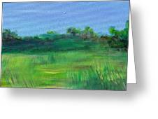 Shaded Meadow Greeting Card