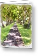 Shaded Walkway To Princeville Market Greeting Card