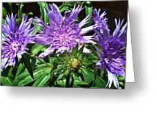 Shades Of Blue And Green Greeting Card