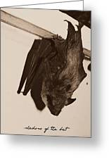 Shadow Of The Bat Greeting Card