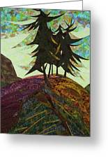 Shadow Of The Evening Greeting Card