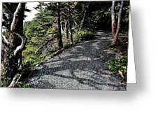 Shadow Path Greeting Card