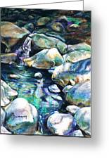 Shadow Play In Mission Creek Greeting Card